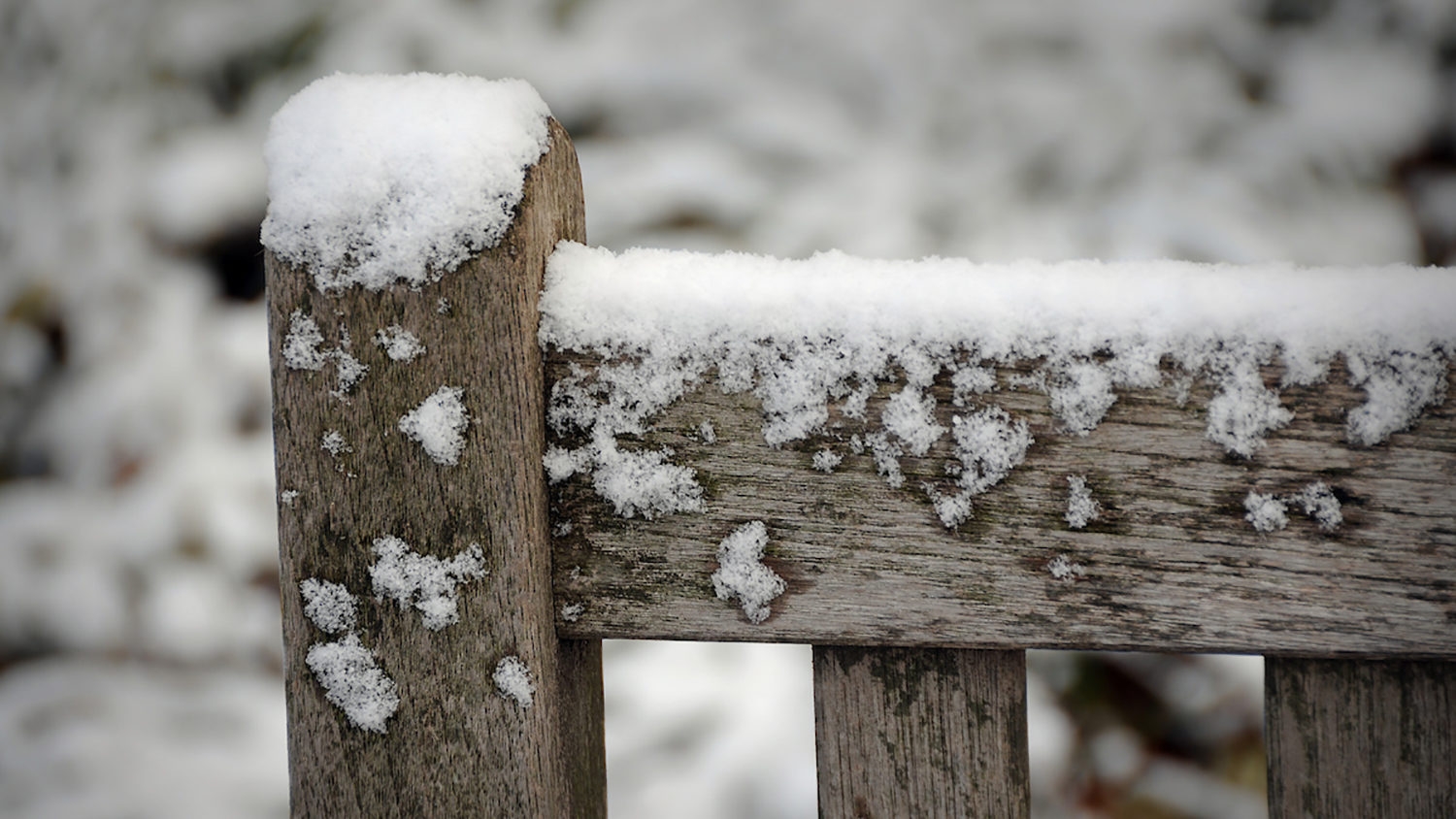 Snow on a bench in Yarborough Court.