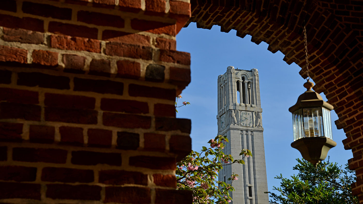 Spring morning sun illuminates the Holladay Hall and the Memorial Belltower