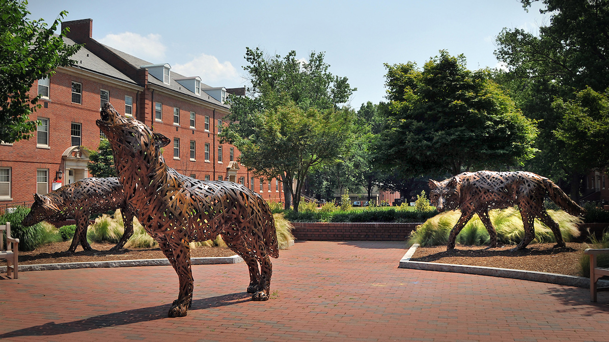 Copper wolf statues