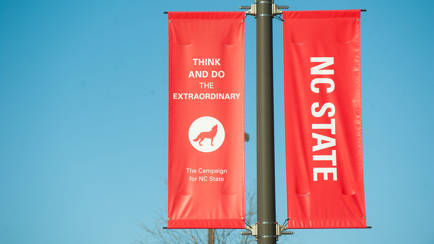 Think and Do banners