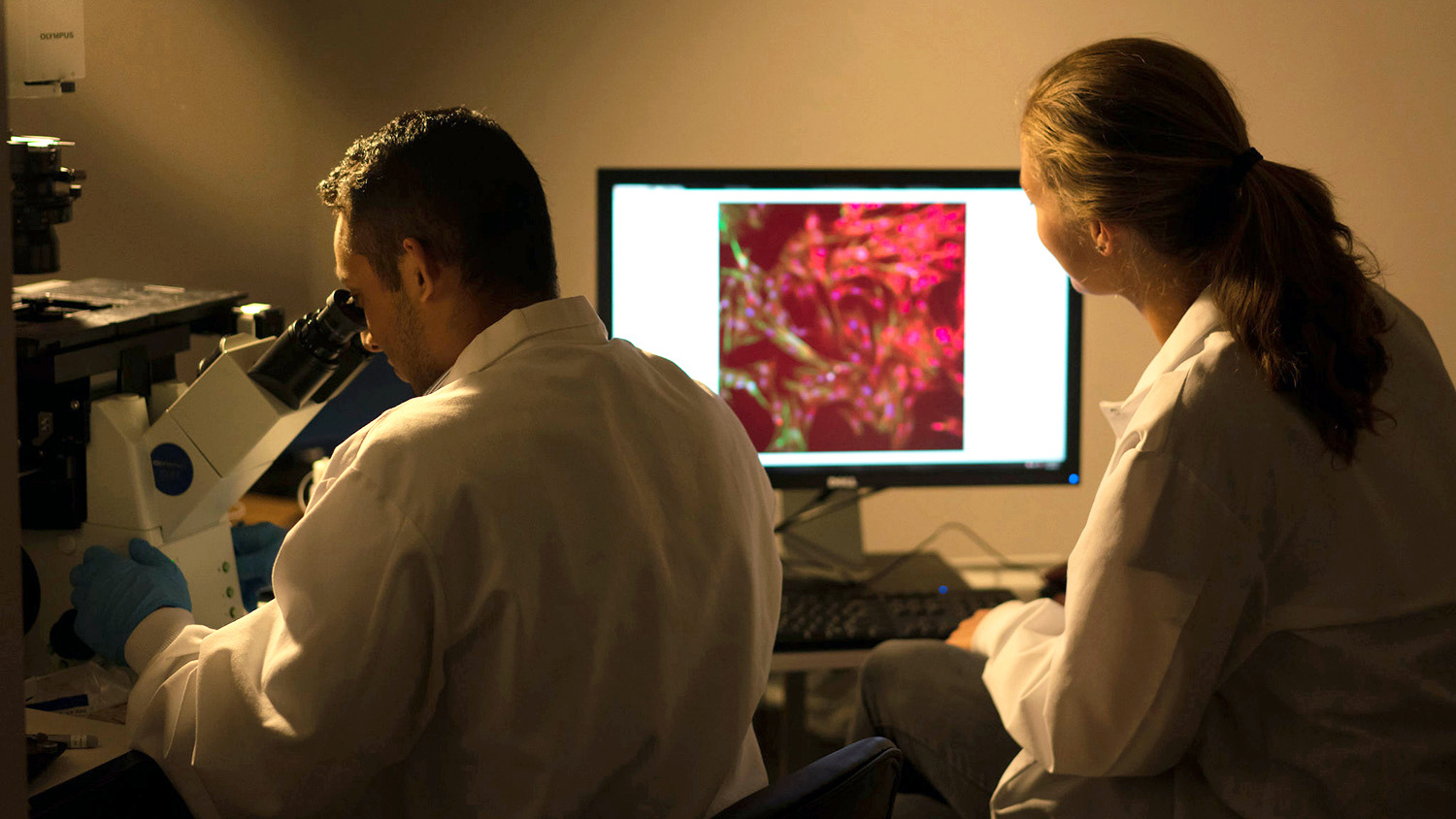 Two researchers look at samples under a microscope and on a screen in a darkened lab