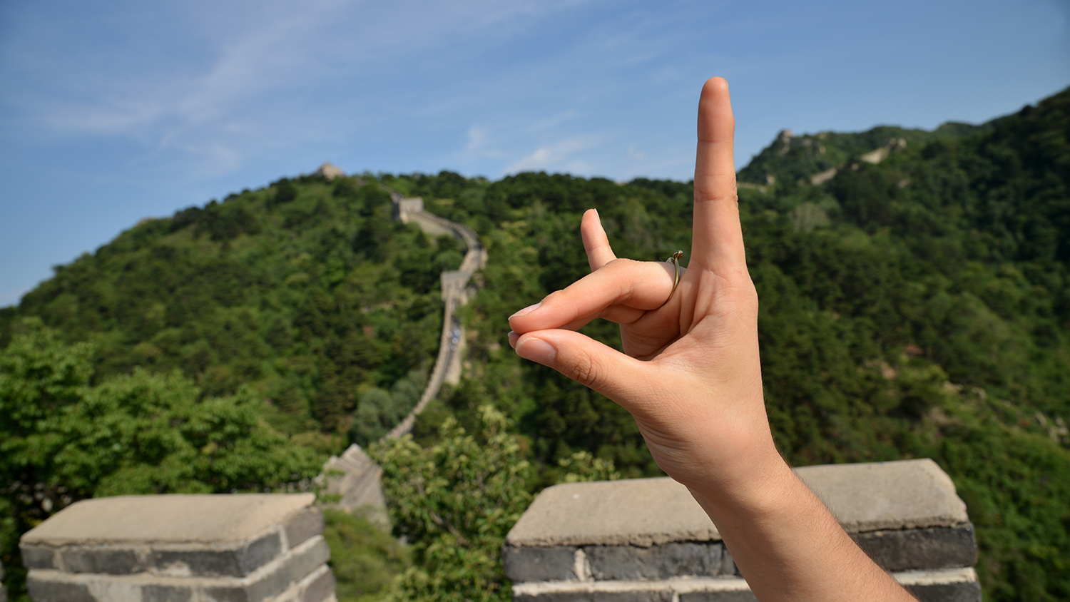 Wolf hand along the Great Wall.