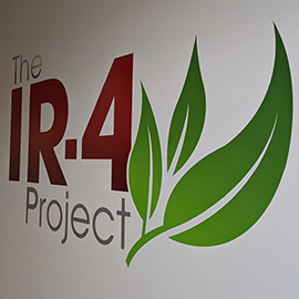 I4 Project