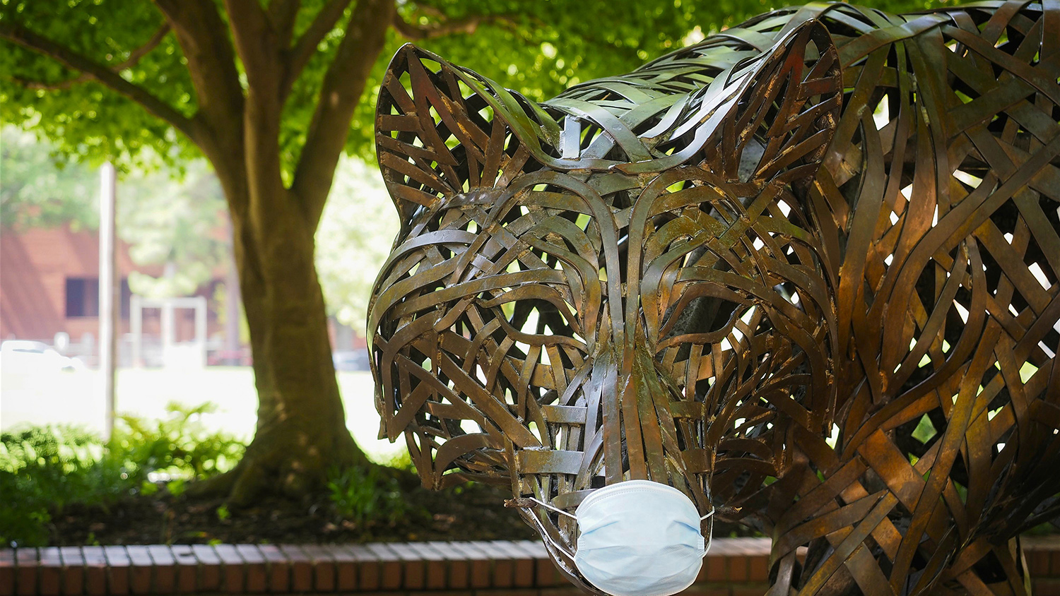 copper wolf with mask